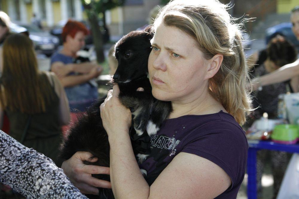 У Полтаві акція допомоги безхатнім тваринам