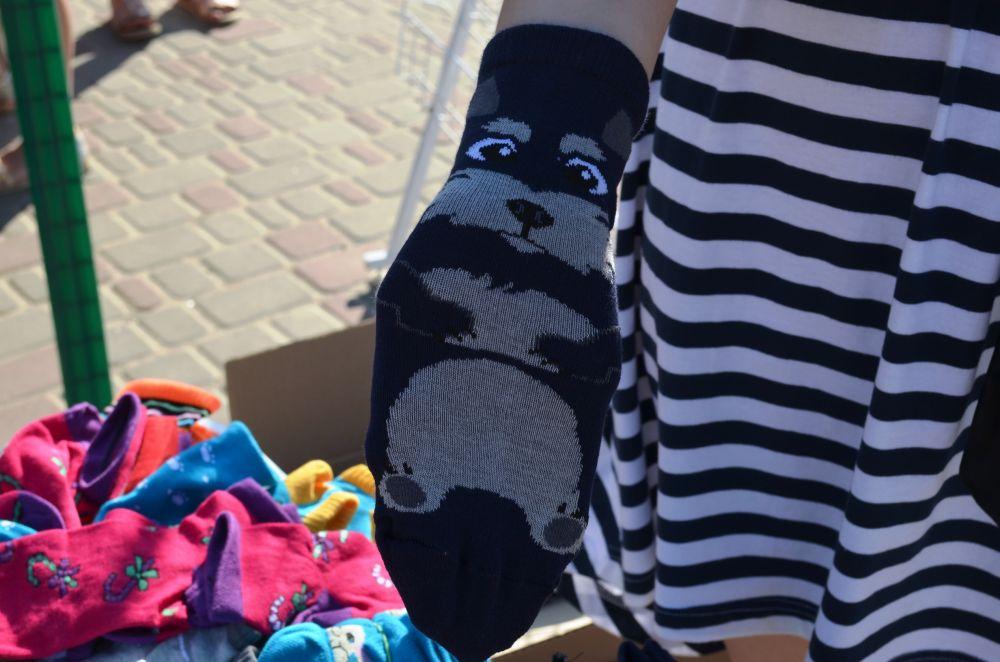 Зібрати кошти на стерилізацію тварин допомагали шкарпетки